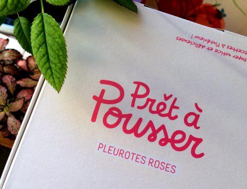 Ma recette de risotto aux Pleurotes Roses Prêt à Pousser !