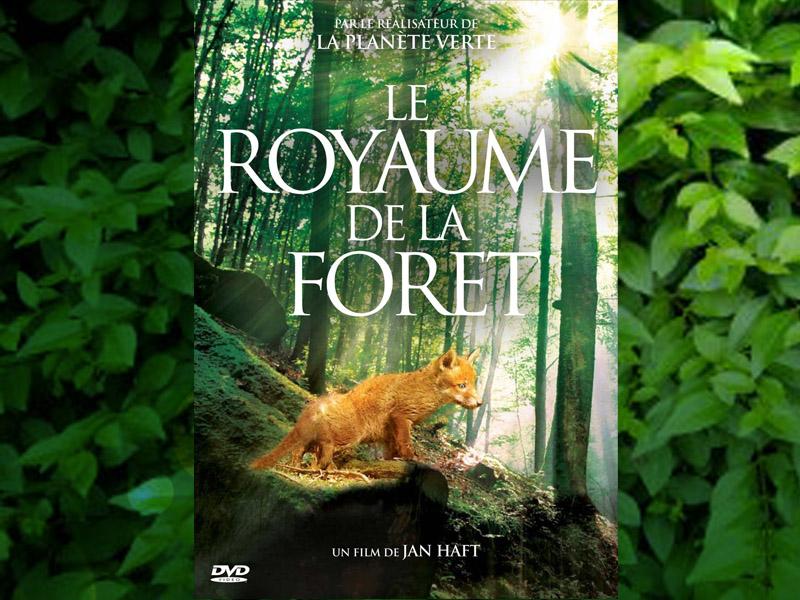 Au Royaume de la Forêt. Jan Haft.